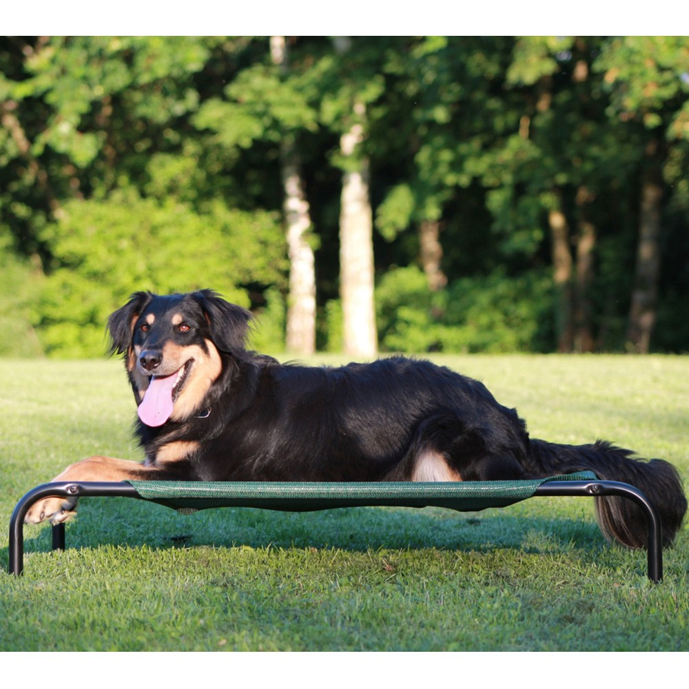 coolaroo hundeliege hundebett haustierbett hundesofa hunde schlafplatz sofa 799 garten sonstige 2171. Black Bedroom Furniture Sets. Home Design Ideas